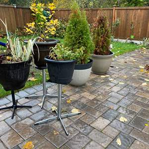 Lot # 374 - Potted Plants & Plant Stands