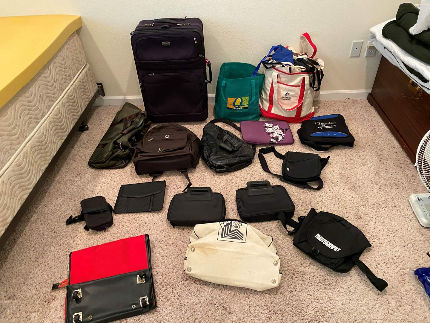 Lot # 213 - Suitcase, Duffel Bags, Re-usable Shopping Bags, Backpacks & More.. (main image)