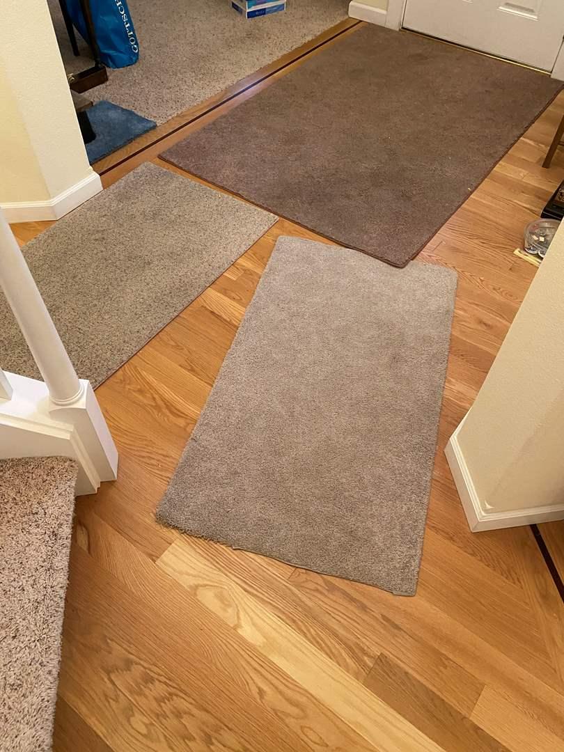 Lot # 229 - Three Entry Way Rugs (main image)