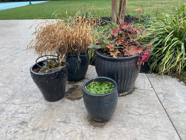 Lot # 95 - Four Ceramic Flower Pots w/Dirt (main image)