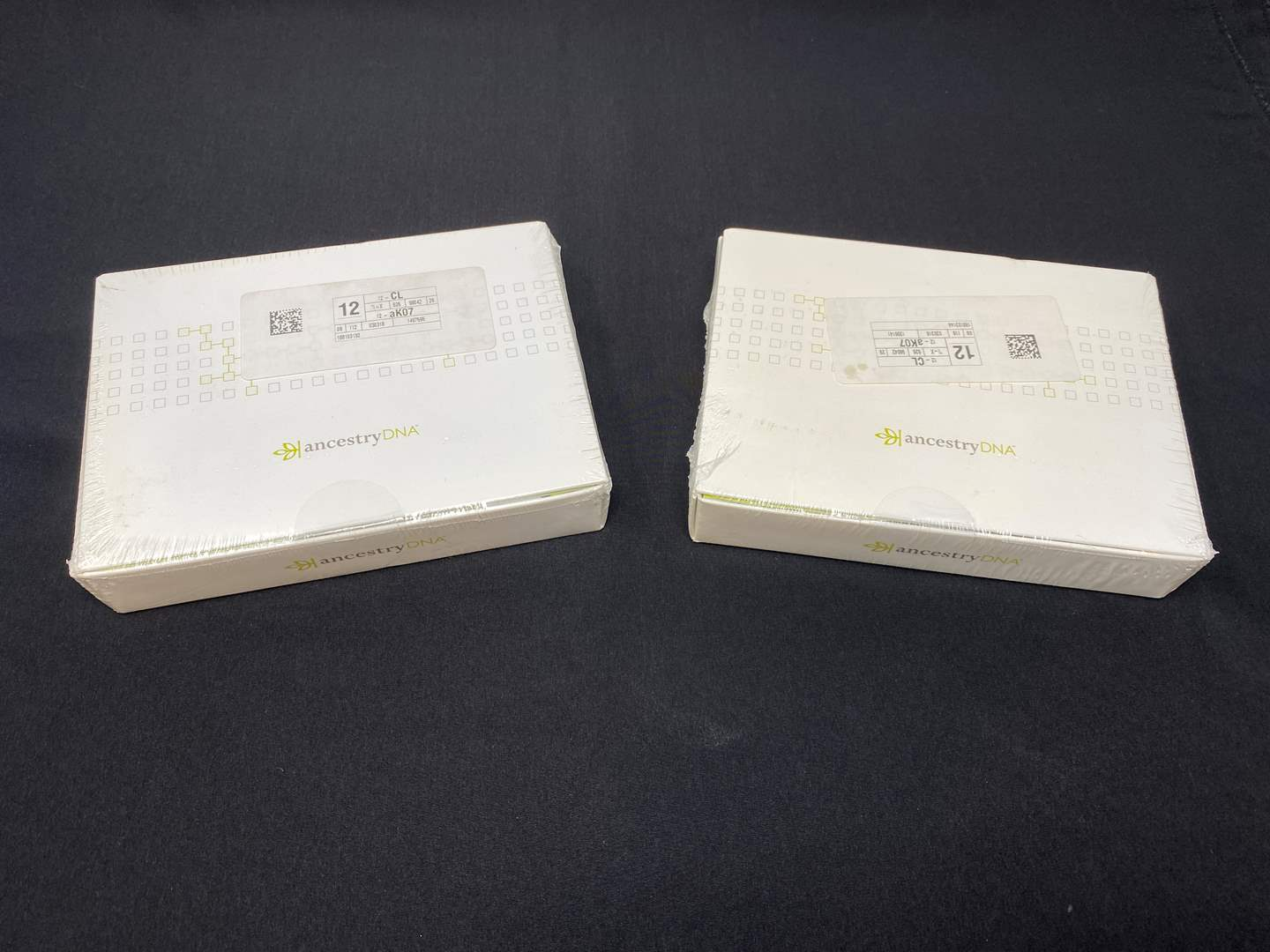 Lot # 26 - Two Unopened Ancestry DNA Kits (main image)