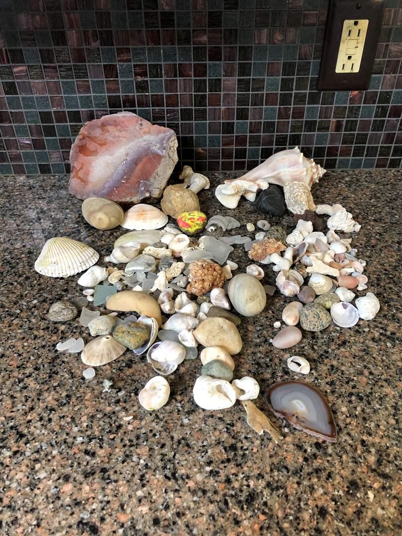 Lot # 74 - Small Collection of Seashells, Sea Glass, Beautiful Large Polished Stone (main image)
