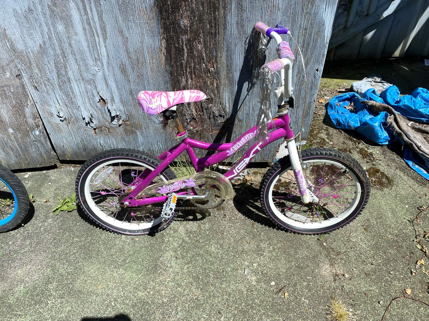 Lot # 239 - Toddler Size Next Misty Bicycle  (main image)