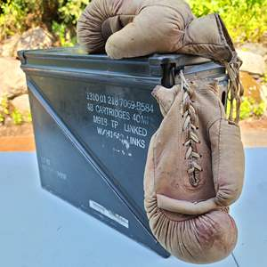 Lot#94 Ammo Box-Ing Gloves