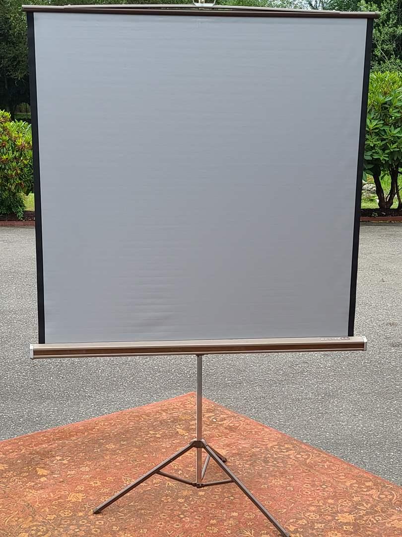 Lot#246 Projector Screen (main image)