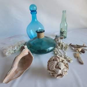 Lot # 79 Shells & Glass