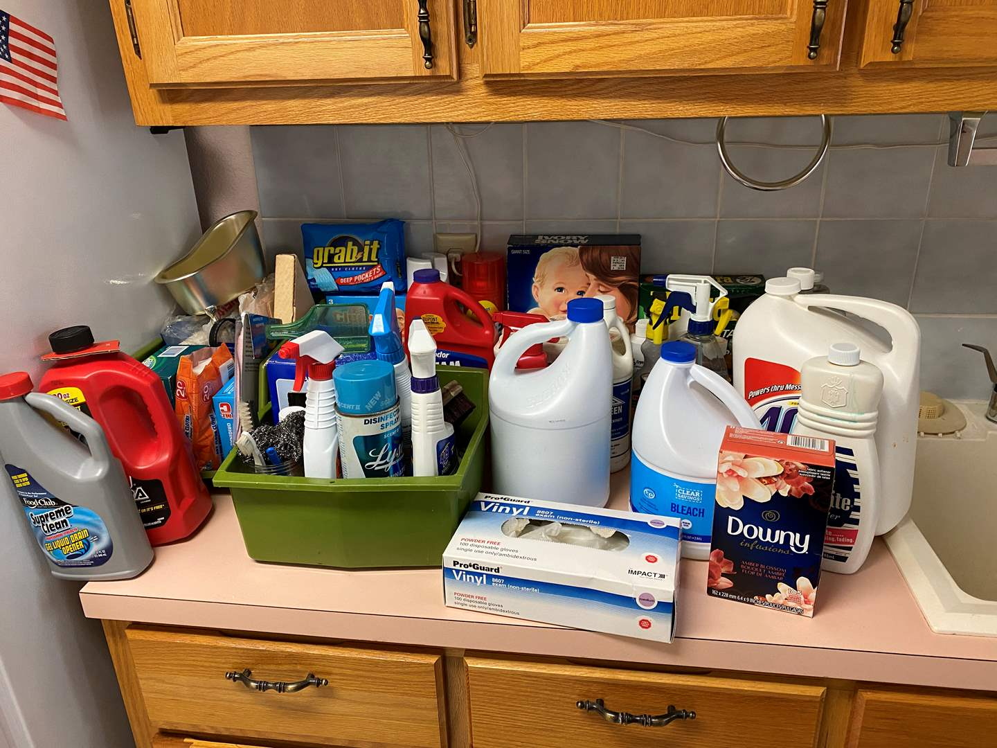 Lot # 121 - Household Chemicals & Cleaners - (Some Full, Some Half Full, Some Almost Empty) (main image)
