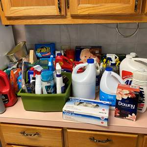 Lot # 121 - Household Chemicals & Cleaners - (Some Full, Some Half Full, Some Almost Empty)