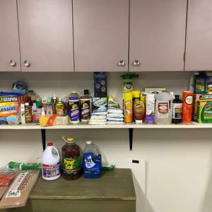 Lot # 254 - Household Chemicals, Garden Fertilizers, Cleaning Supplies & More