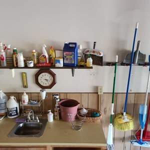 Lot # 124 Household Cleaning & Care Supplies