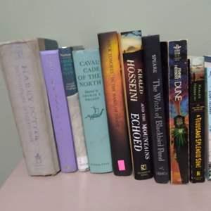Lot # 119- Lot of Fiction Books