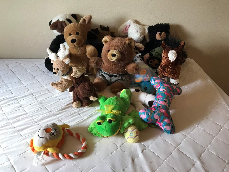 Lot # 213 - Small lot of Stuffed Animals  (main image)