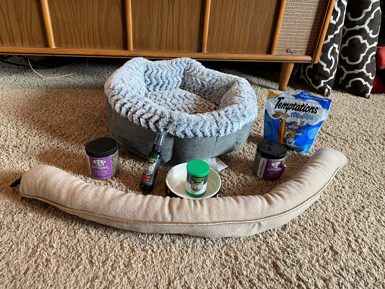 Lot # 41 - Cat Bed, Cat Nip, Food Dish & Treats (main image)