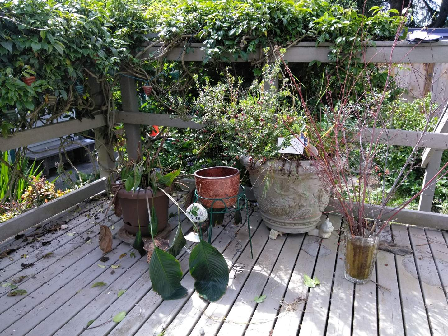 Lot # 172 - Plants, pots, plant stand, wind chimes, ceramic pot feet (main image)