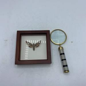 Lot # 28 Encased White-Lined Sphinx and Magnifying Glass