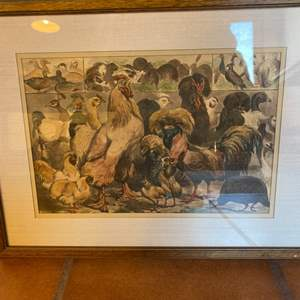 Lot # 13 Framed Hens / Roosters Print