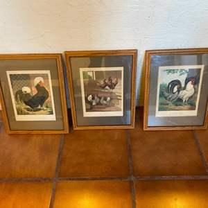 Lot # 31 Set of 3 Chicken Framed Prints