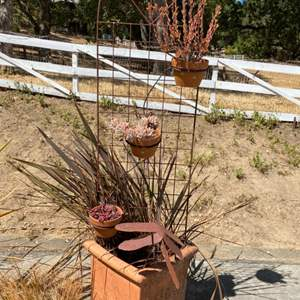 Lot # 23 Large Potted Plant with Iron Stand & Ornaments with Succulents