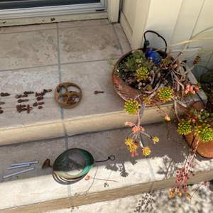 Lot # 222 Lot of Plants With Wind Chimes