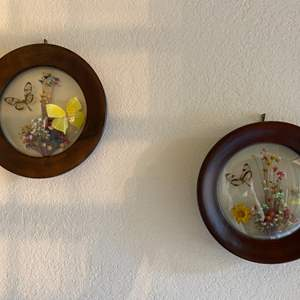 Lot # 35 Two Nature-Themed Art Displays