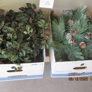 94-2-Boxes of Greenery