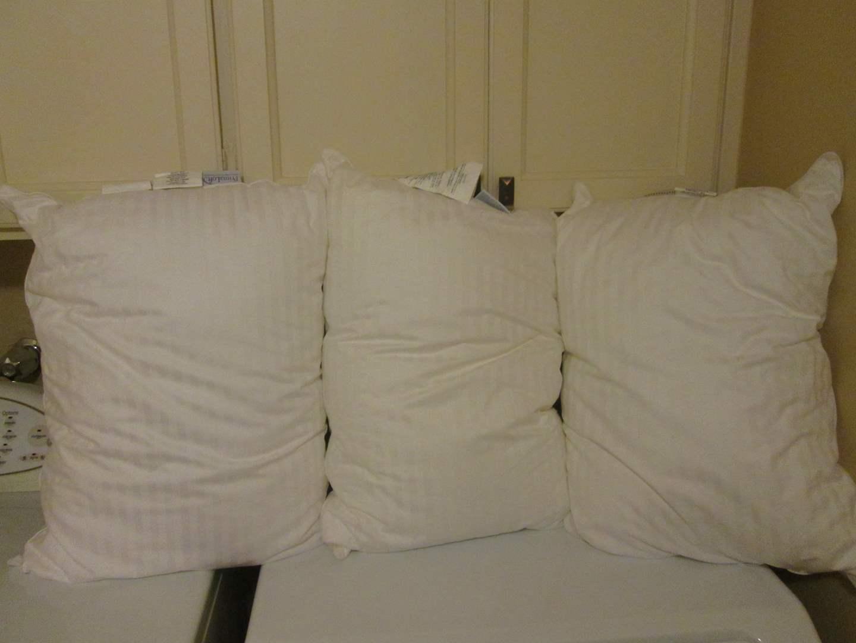 Lot # 49 - 3-Bed Pillows Pottery Barn (main image)