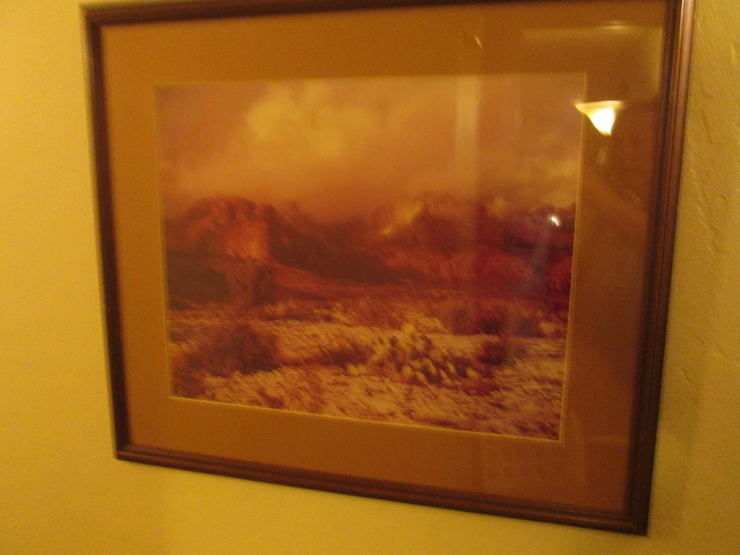 Lot # 262 - 2-Mountain-Themed Pictures (main image)