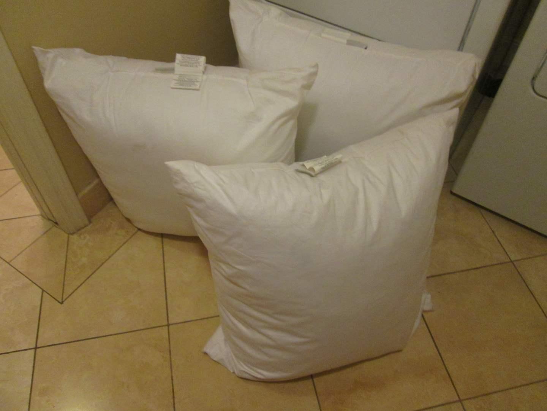 Lot # 266 - 3-Pottery Barn Bed Pillows (main image)