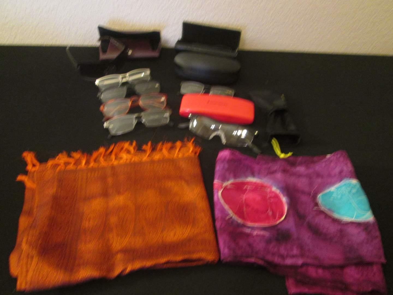 Lot # 253 - Eyewear & Cases (main image)
