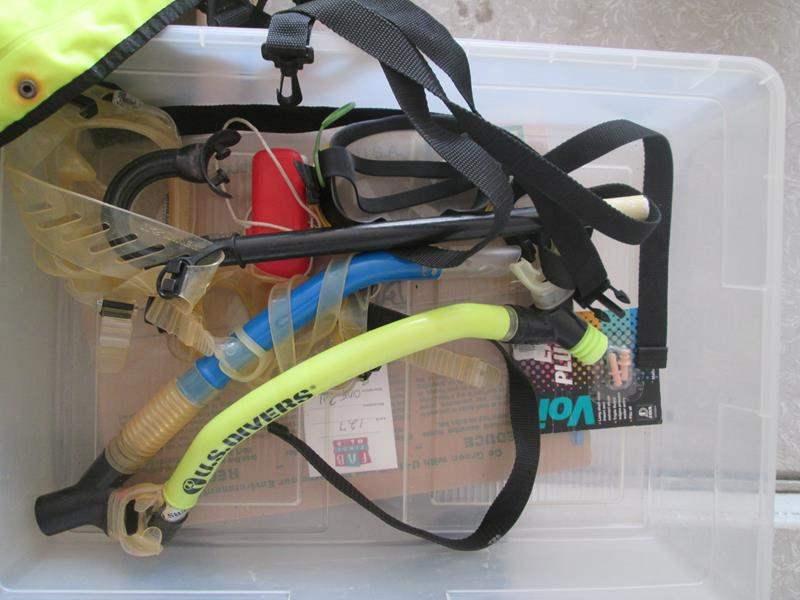 Lot # 161 - Snorkeling Gear & 2-Life Vests (main image)
