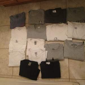 Lot # 76 - Variety of Men's T-Shirts, XL