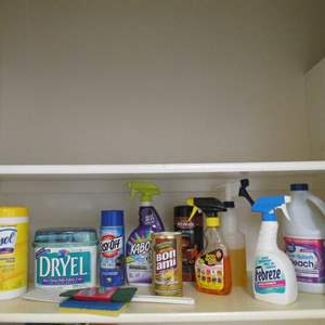Lot # 185 - Cleaning Products