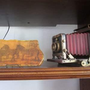 Lot # 230 - Zebra Plaque & Camera Decor