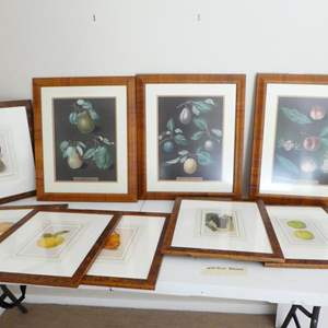 Lot # 54-framed art, fruit pictures, perfect for your kitchen