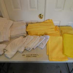 Lot # 283-Microfiber towels and rags