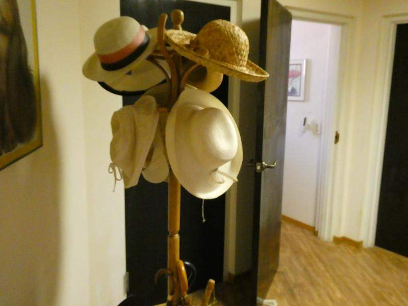 Lot # 234- Hat rack and hats/ umbrellas (main image)