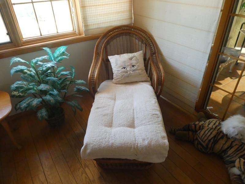 Lot # 63-Wicker wing back lounge chair with plant (main image)