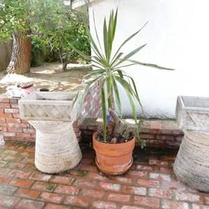 Lot # 317-Backyard decor, planters, wicker stands, cement planters (2)