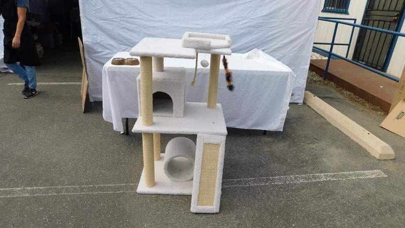 Lot # 50 - Cat climbing gym and pet bowl (main image)