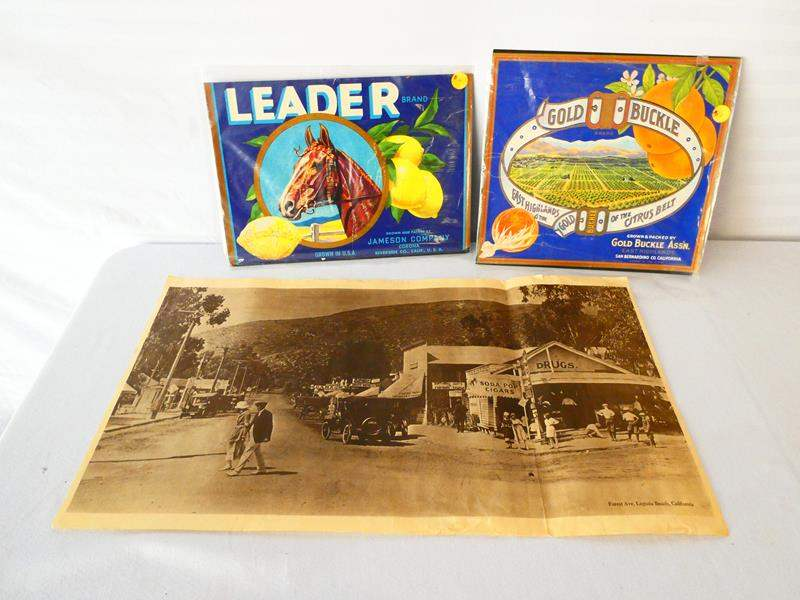 Lot # 29-Original California crate labels, unopened/ Print copy on parchment, Laguna Beach 1910, see pictures (main image)