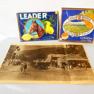 Lot # 29-Original California crate labels, unopened/ Print copy on parchment, Laguna Beach 1910, see pictures