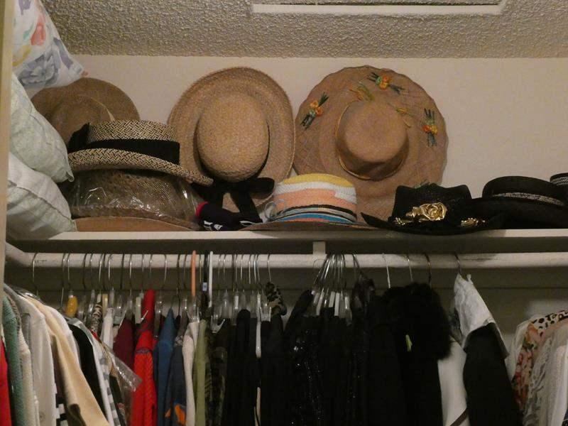 Lot # 48-Hats, Hats, Hats! (main image)