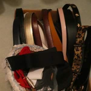 Lot # 49-Lots of belts!