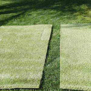 Lot # 131 -Two astro turf mats