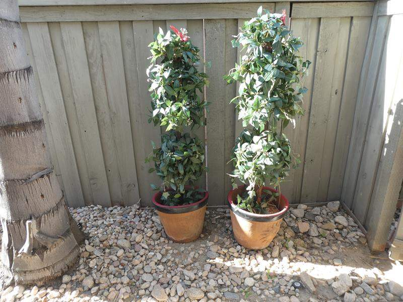 Lot # 159- Two artificial potted plants (main image)