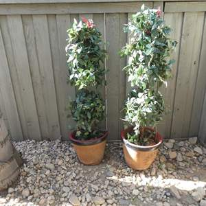 Lot # 159- Two artificial potted plants