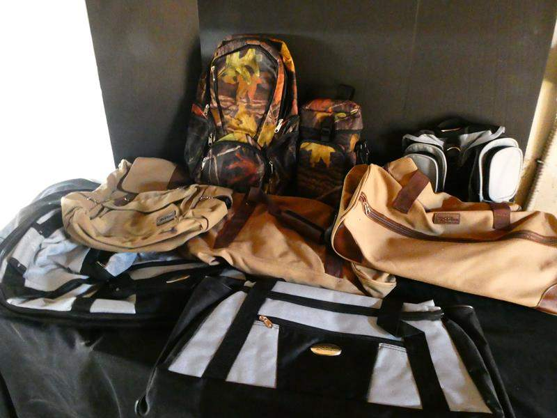 Lot # 185- Bella Russo Bags and several more bags- most have never been used (main image)