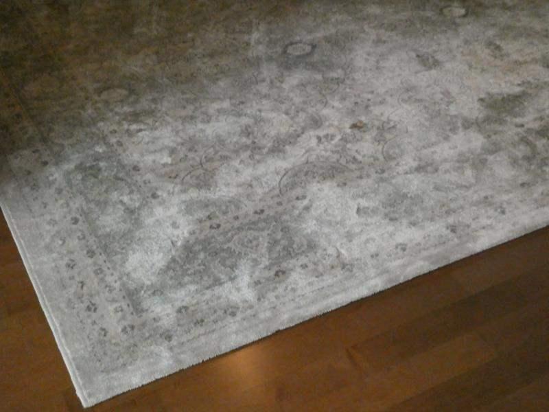 Lot # 60- Area Rug (main image)