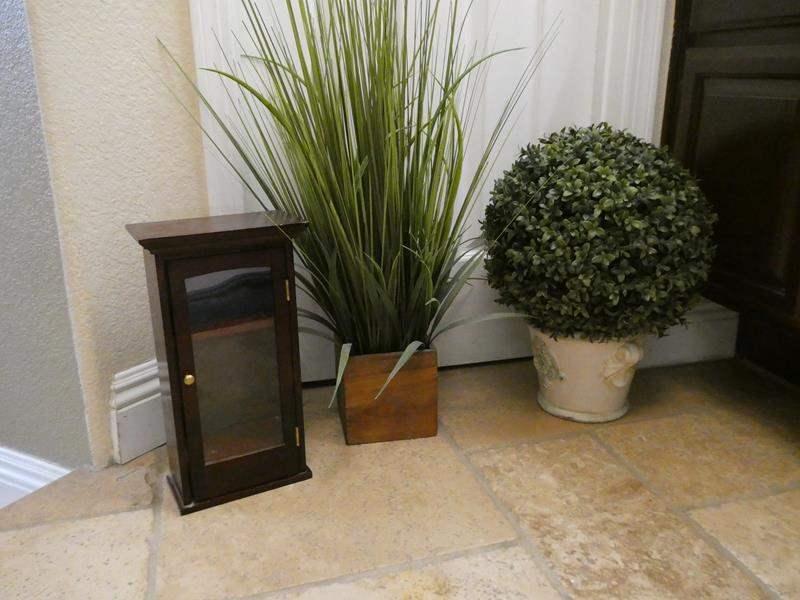 Lot # 112- Cute plants/ home decor! (main image)