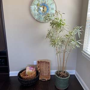 """Lot # 15-Real Potted Tree """"plant"""" with Decor Items!"""